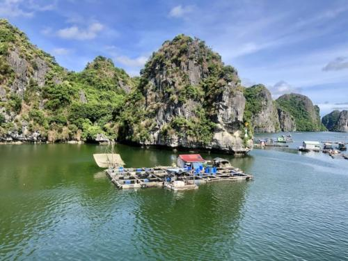 Ha long baia crociera halongbay 12