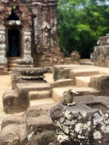 My son hoi an tour templi 5