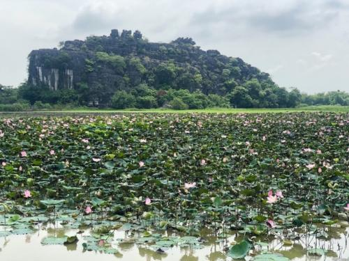 Ninh binh-mua caves risaie viste mozzafiato vietnam viaggio 2