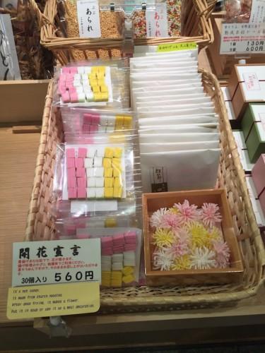 nishiki market9234