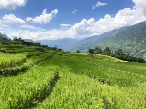sapa sa pa vietnam risaie trekking 6