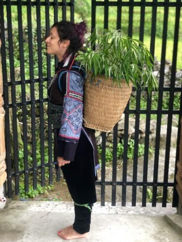 sapa sa pa vietnam risaie trekking abiti tradizionali